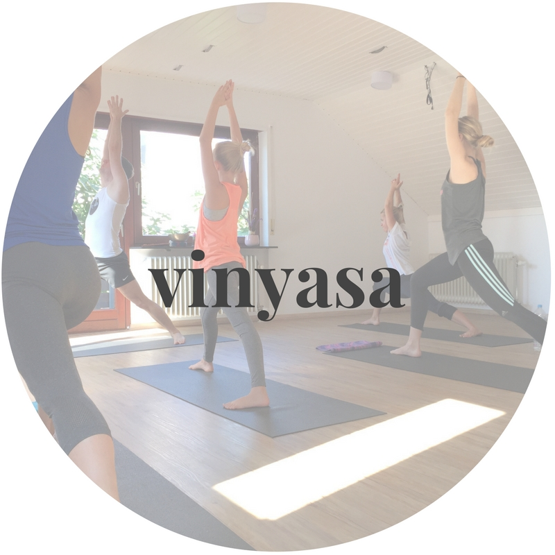 FLYoga, Vinyasa Power Yoga